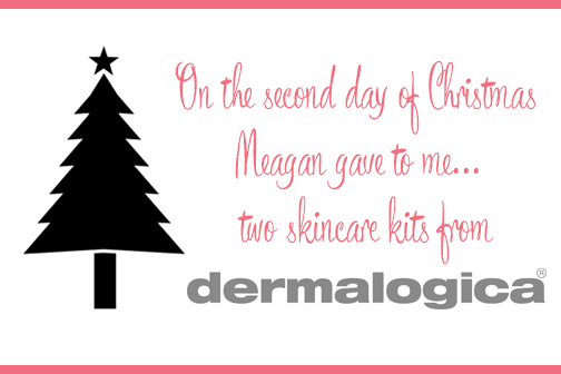 On the second day of Christmas, Meagan gave to me... Dermalogica skincare kits for me and a friend