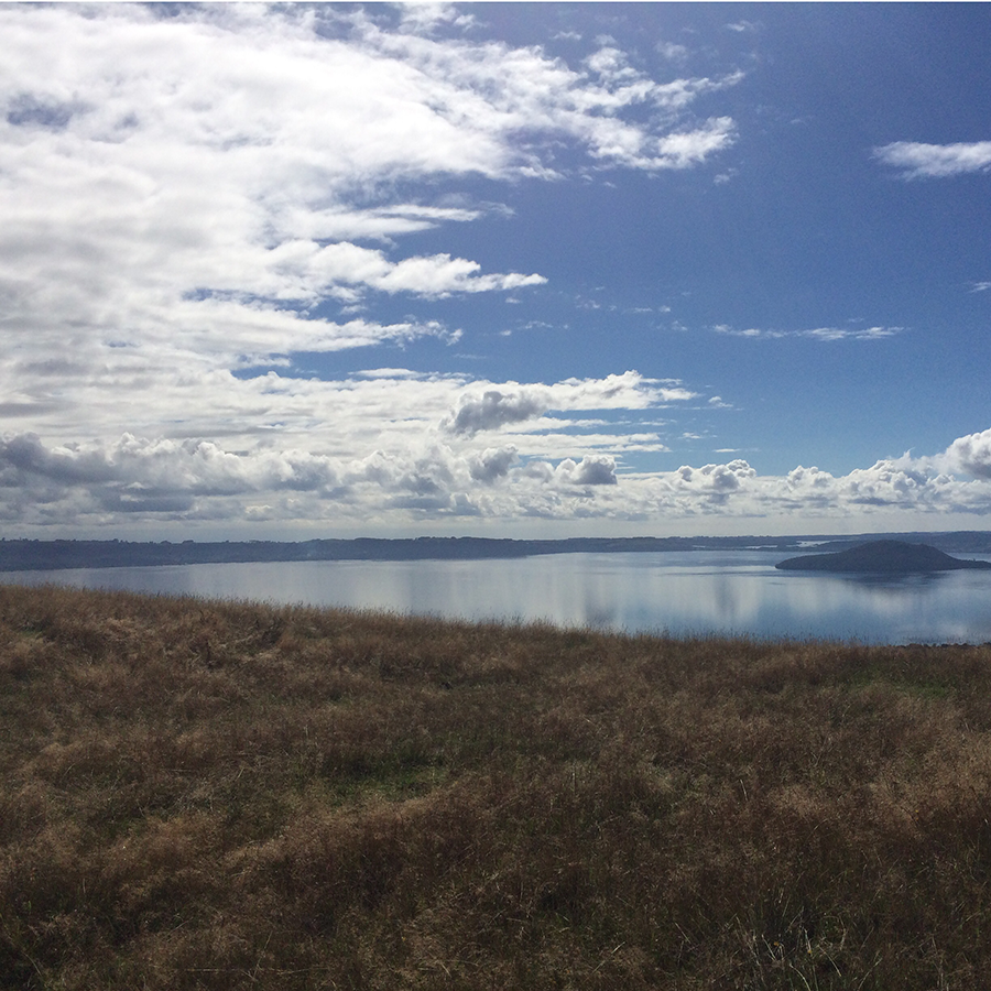 2015 in review: looking out over the lake in Rotorua