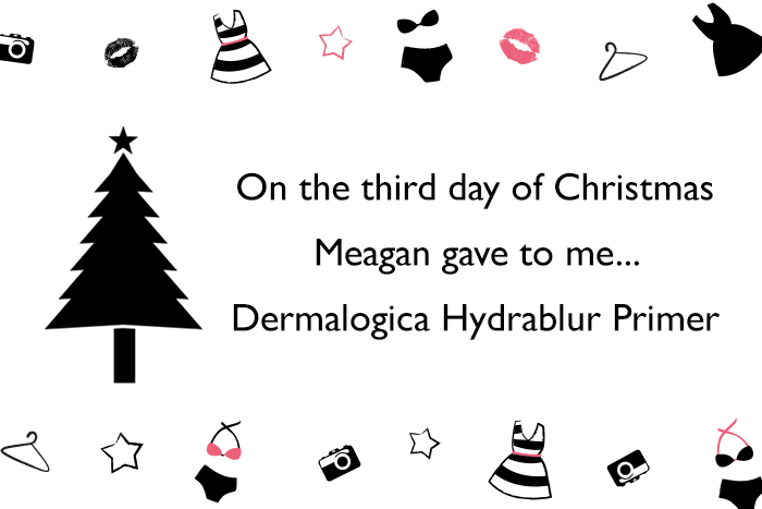 This is Meagan Kerr 12 Days of Christmas Giveaway - Dermalogica Hydrablur Primer